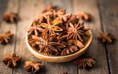 Star Anise Drying Process Steps and Essentials