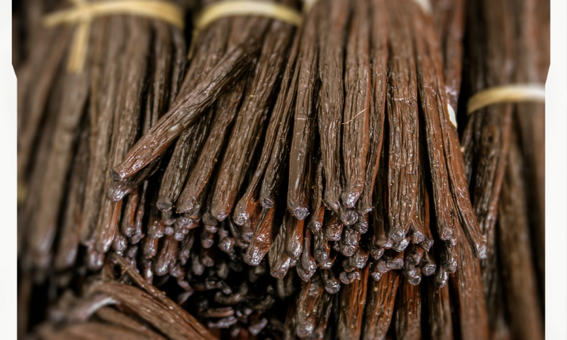 Vanilla Beans Dehydrator | How To Dry Madagascar Vanilla Beans?